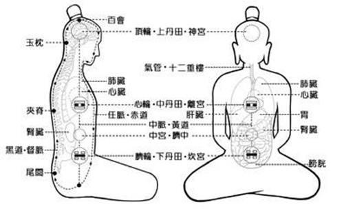 taiji|qigong|tcm|yoga